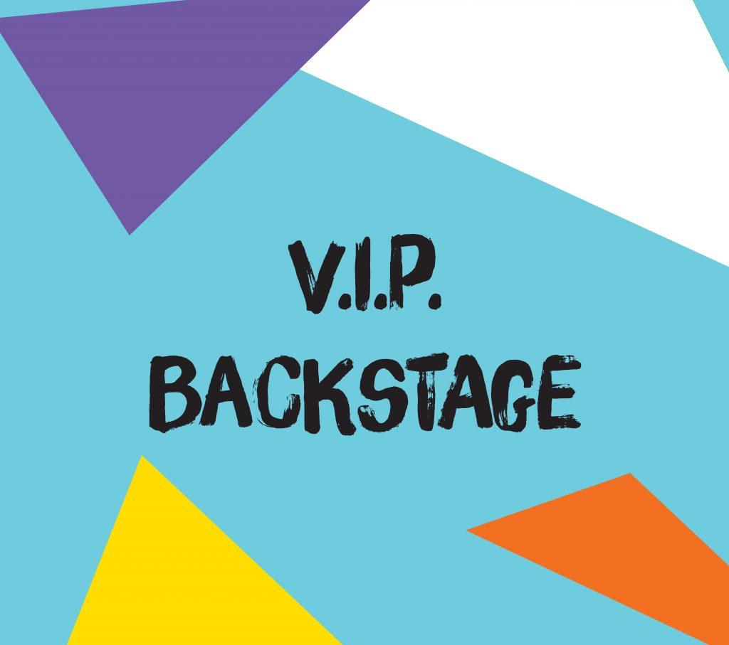 Bache-publicitaire-microperforee-backstage-Rock-en-Seine